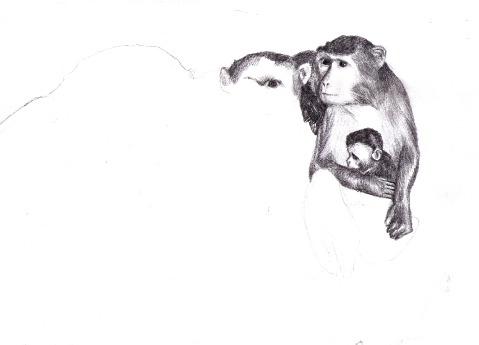 Рисунки Агнес Болмгрен. Изображение № 6.