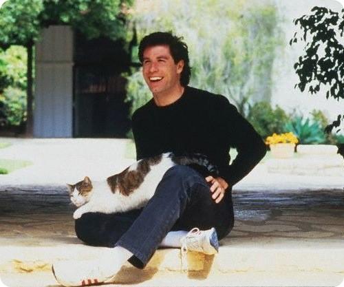Коты и их знаменитости. Изображение № 15.