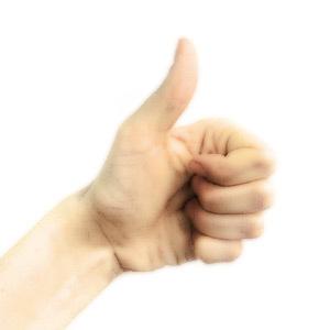 Международный язык жестов. Изображение № 2.