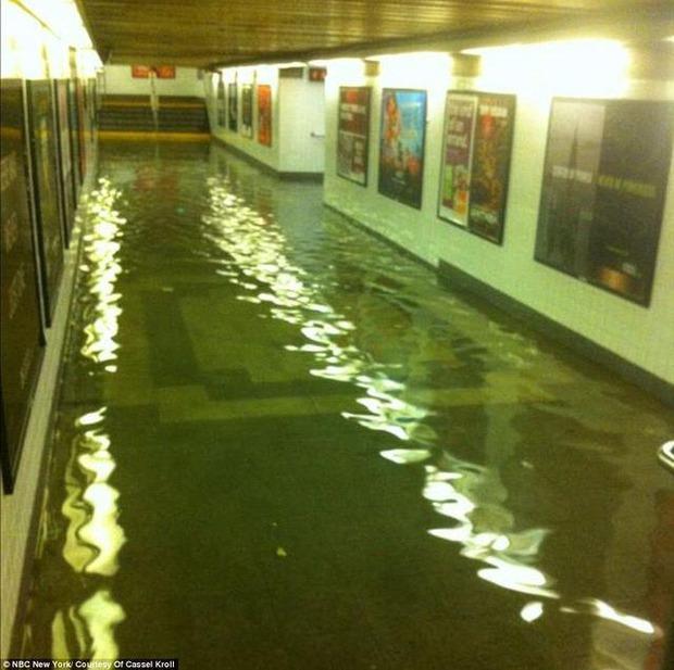 Приближалась гроза: Как выжить в Нью-Йорке под ураганом. Изображение № 7.
