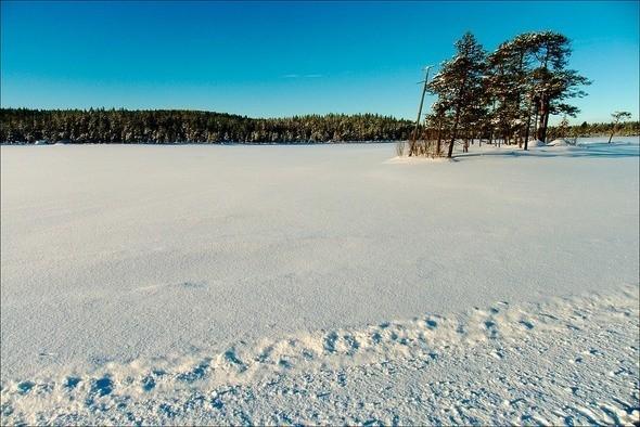 Изображение 27. Выходные в шведском лесу.. Изображение № 27.