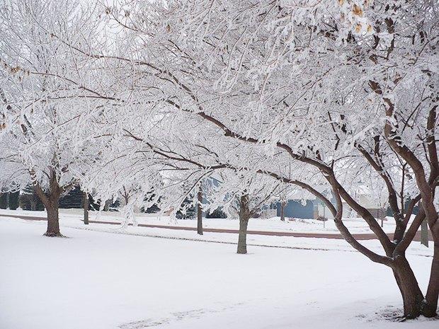 Как зима и зарядка айфона заставляют меня переосмыслить жизнь. Изображение № 2.