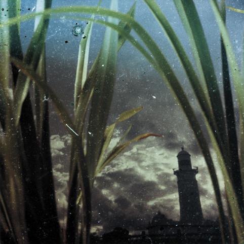 Промышленность и флора. Симбиоз от Ребекки Шанахан (Rebecca Shanahan). Изображение № 2.