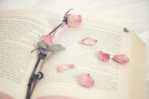 Изображение 19. Никогда не надо слушать, что говорят цветы. Надо просто смотреть на них и дышать их ароматом... Изображение № 19.