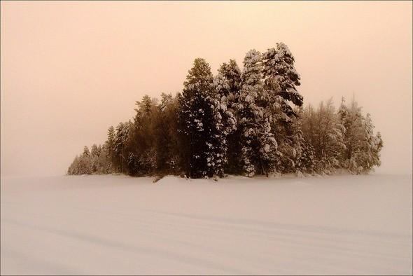 Изображение 41. Выходные в шведском лесу.. Изображение № 41.
