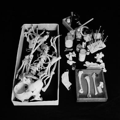 Мультяшные скелеты вшкафу ХюнгкуЛи. Изображение № 10.
