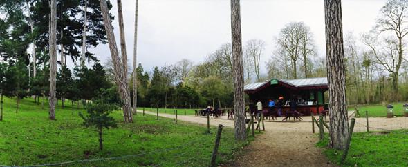 Изображение 30. Париж: сады и парки.. Изображение № 32.