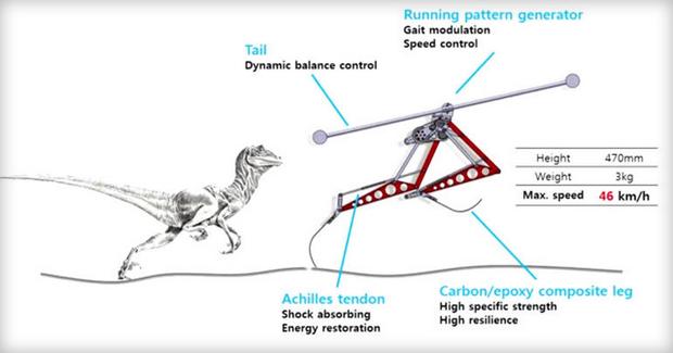 Корейский робот-динозавр побил рекорд скорости среди людей. Изображение № 1.