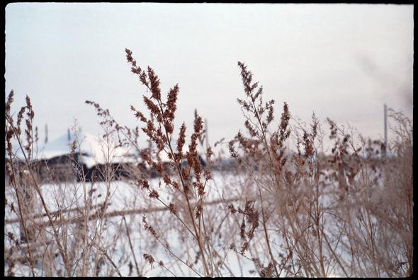 Деревня Окунёво. Изображение № 21.