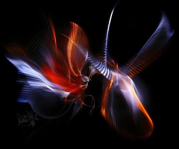 HoryMa. Живая светографика. Изображение № 1.