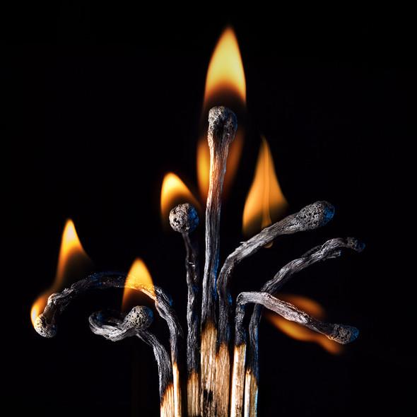 Картины из горящих спичек. Изображение № 31.