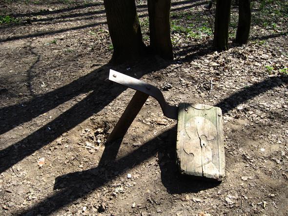 Кунцевский лесопарк. Изображение № 2.