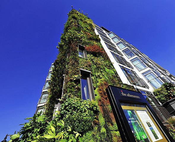 Зеленая архитектура. Изображение № 22.