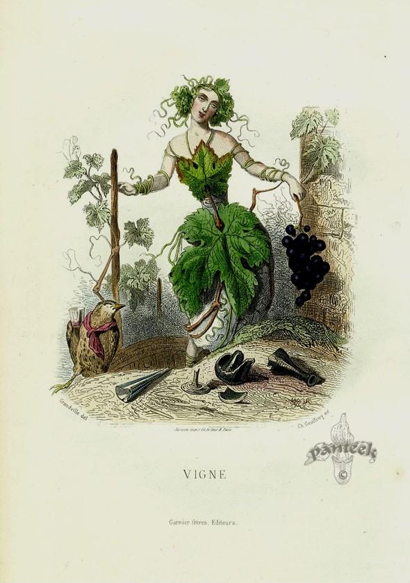 Винтажные иллюстрации J.J. Grandville. Изображение № 10.