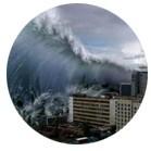 Уроки природы: экологические катастрофы в кино. Изображение № 12.