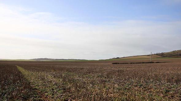 Великобритания: Цветные скалы, чесночная ферма и вкуснейшие бургеры на острове Уайт. Изображение № 38.