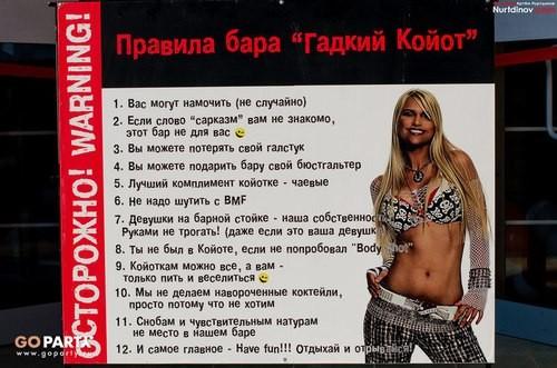 Настоящие татарские ковбои предпочитают чистый виски. Изображение № 2.