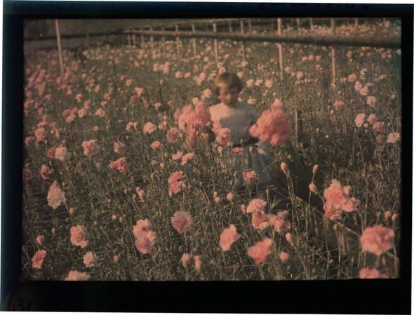 Автохром Люмьер – цветные фотографии начала XX века. Изображение № 19.