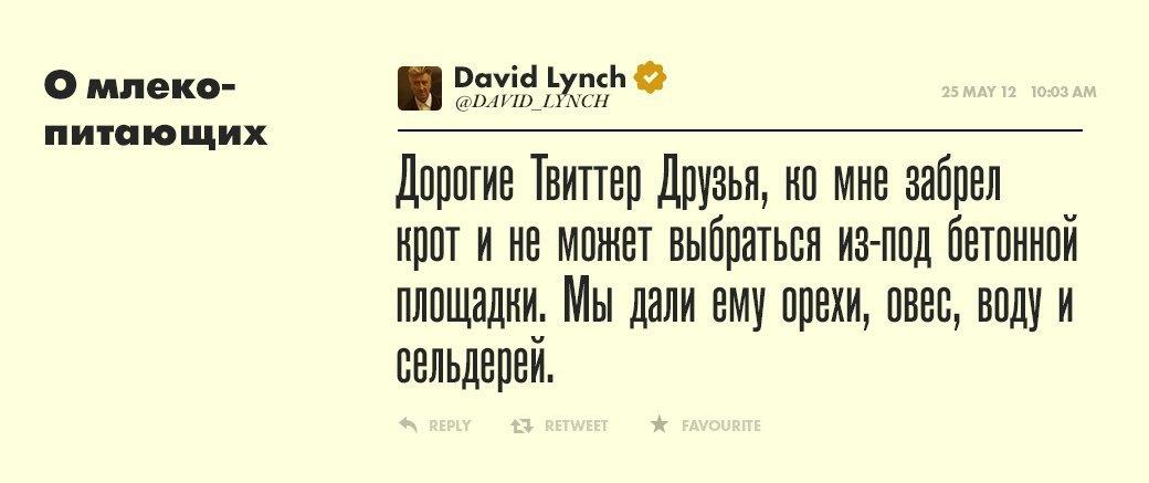 Дэвид Линч, режиссер  и святая душа. Изображение № 3.
