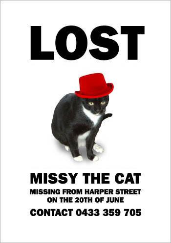 Кошка Мисси. Изображение № 8.