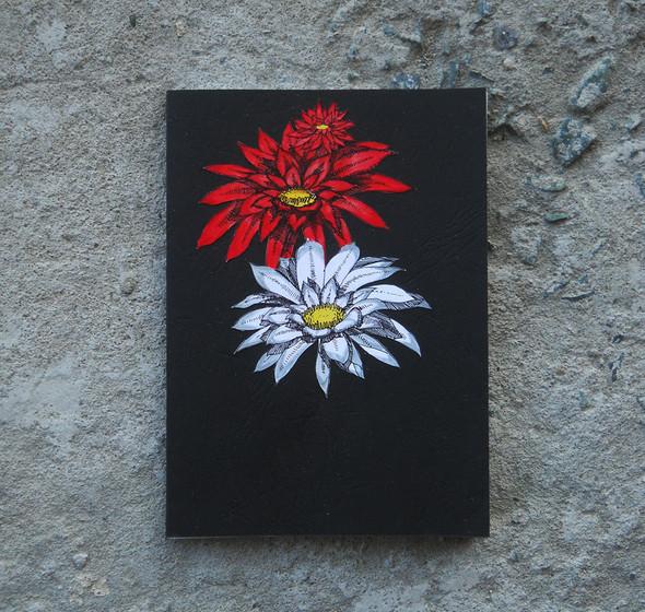 ASPID BOOK в Арт-магазине Heart of Art. Изображение № 7.
