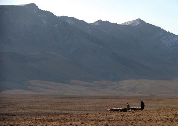 Афганистан. Военная фотография. Изображение № 84.