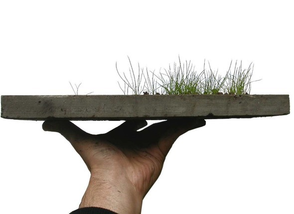 Экологичный бетон заменит токсичный асфальт. Изображение № 6.