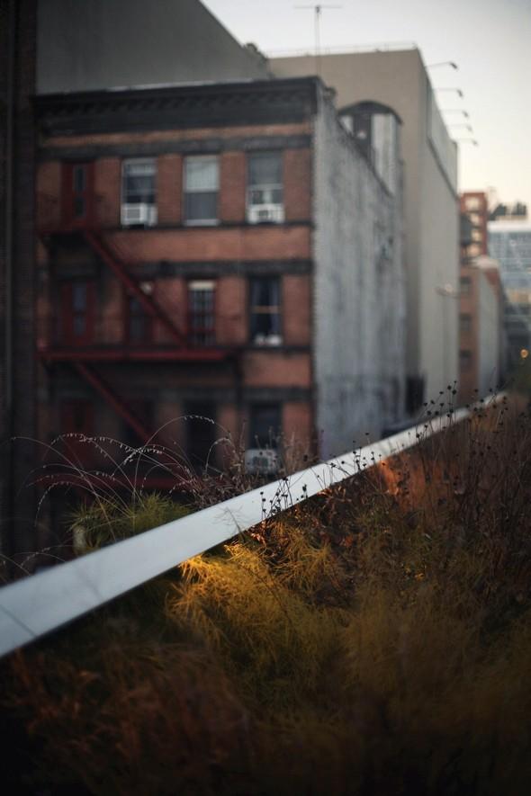 В поисках своего Нью-Йорка. Изображение № 20.