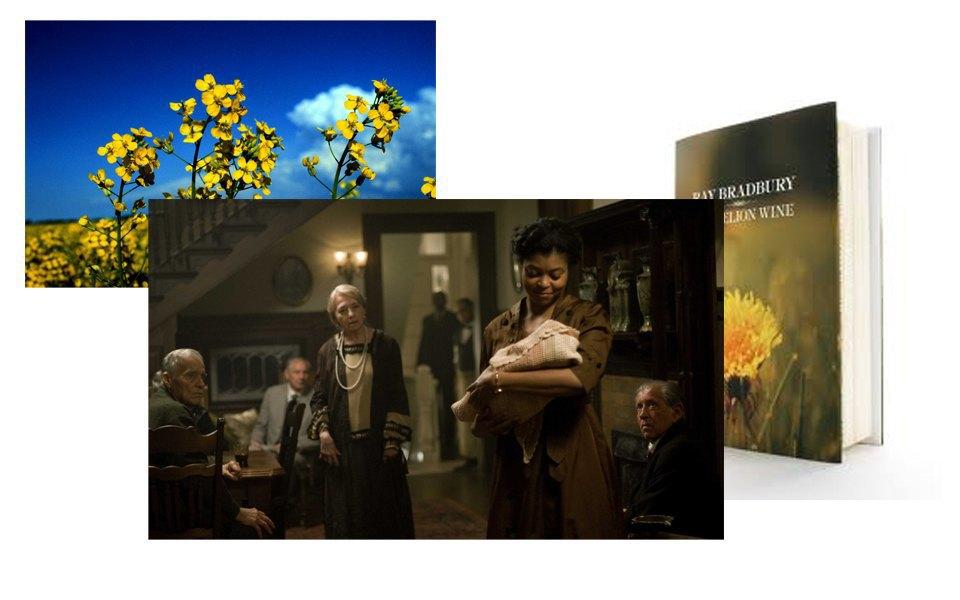 Повесть Рэя Брэдбери «Вино из одуванчиков», Цветы, Воспоминания. Изображение № 24.