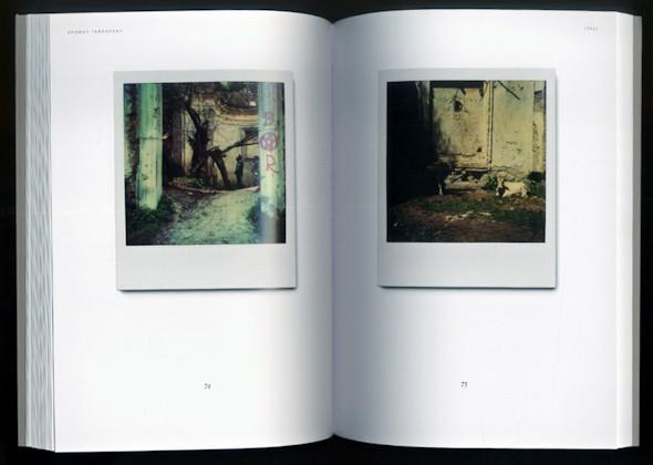 20 фотоальбомов со снимками «Полароид». Изображение №238.