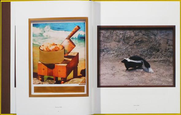 7 альбомов о современном искусстве Ближнего Востока. Изображение № 61.