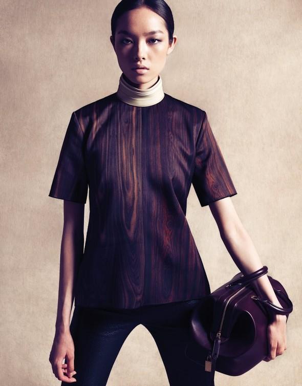 Съёмка: Сунь Фэй Фэй и Мин Си в Celine для Vogue. Изображение № 6.