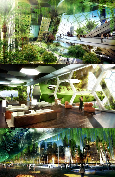 Городские «джунгли». Изображение № 9.