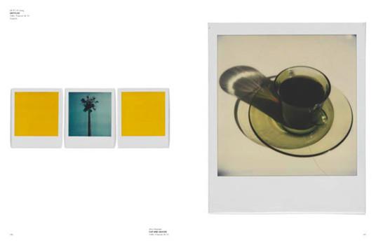 20 фотоальбомов со снимками «Полароид». Изображение №86.