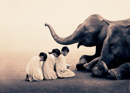 "Gregory Colbert's ""Ashes and Snow"". Изображение № 3."