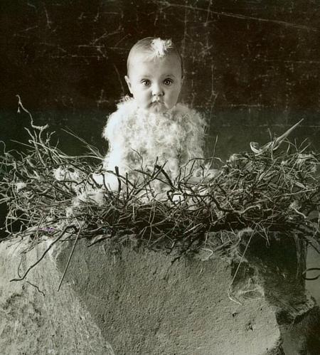 Anne Geddes иеё детки. Изображение № 7.