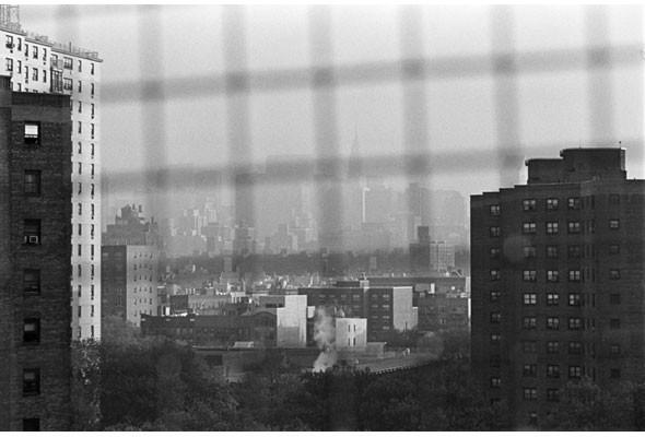 Тим Барбер. Талант от Нью-Йорка. Изображение № 69.