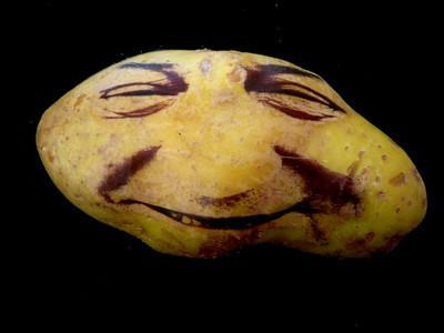 Картофельные портреты. Изображение № 17.