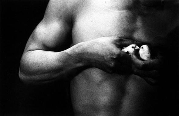 Эйко Хосоэ - фотография, как танец на грани. Изображение № 21.