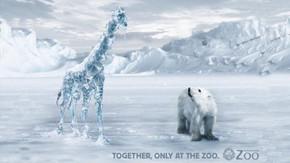 В мире животных: Герои «Мадагаскара» в мемах, рекламе и видеороликах. Изображение № 8.