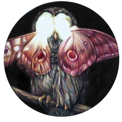 Эффект бабочки Marco Mazzoni. Изображение № 29.