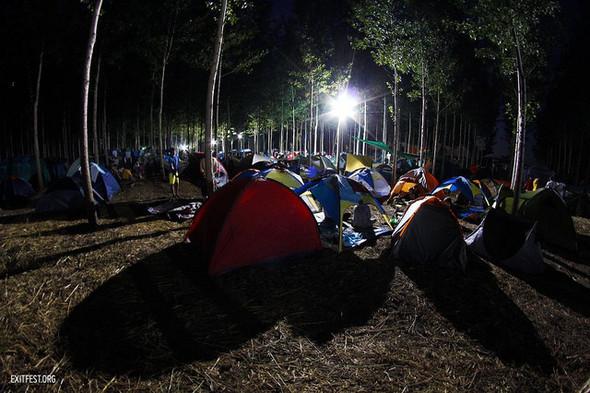 10 молодых музыкантов: Фестиваль EXIT 2012. Изображение №20.