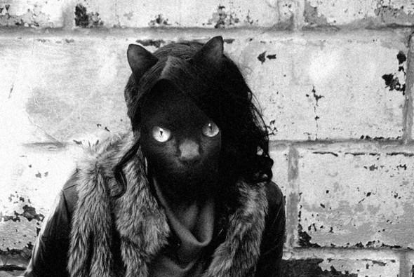 Культ личности кошки. Изображение № 1.