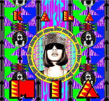 Второй альбом M. I. A. – Kala. Изображение № 1.