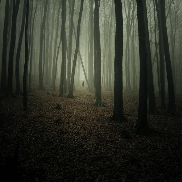 Одиночество, которое восхищает. Изображение № 7.
