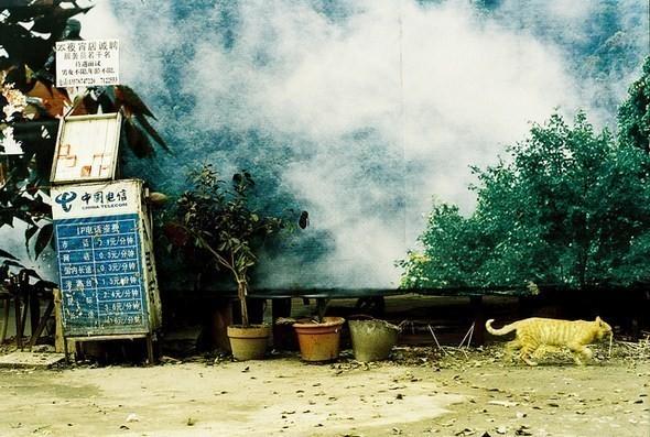 Изображение 12. Фотограф: Юань Сяопень.. Изображение № 12.