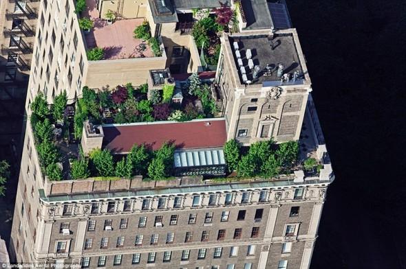Крыши Нью-Йорка. Изображение № 3.