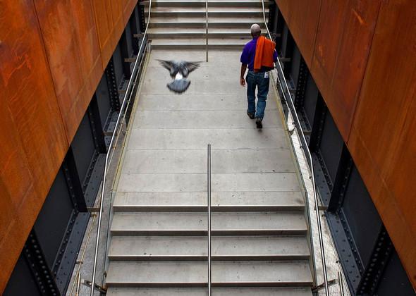 The High Line: история о том, как железная дорога обрела друзей. Изображение № 7.