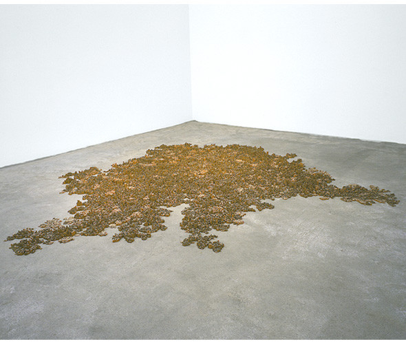 Тара Донован: обыденное и невероятное. Изображение № 9.