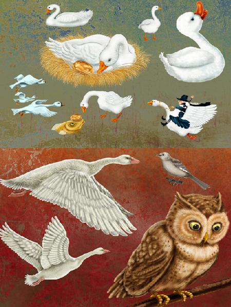 Австралийские иллюстраторы ииллюстрации. Изображение № 71.